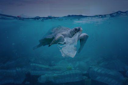 Mar de plástico - reciclaje
